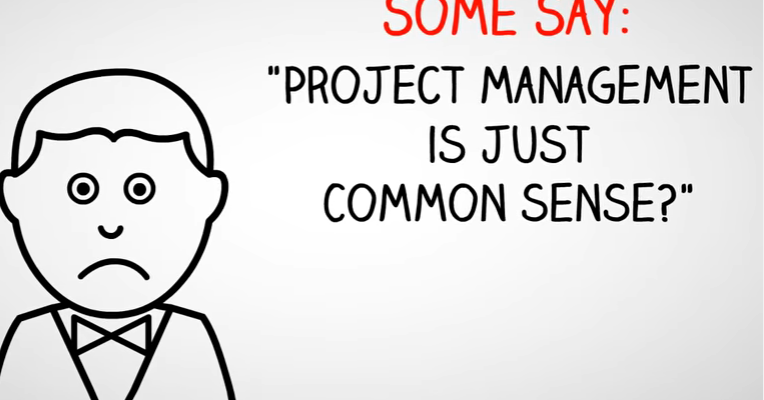 What makes a great Project Manager? - PMIS Consulting Limited